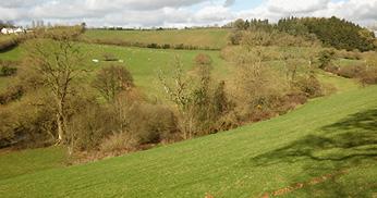 Devon countryside views.