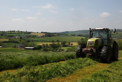 Silage making in the Devon sunshine