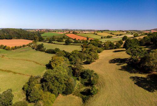 Rolling Devon countryside